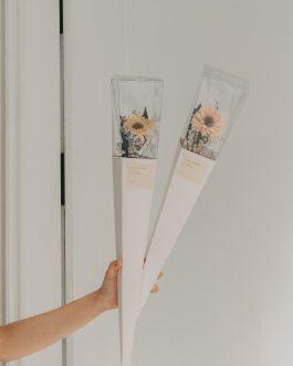 太陽花盒裝單支花束  White flower