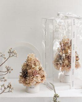 咖啡褐色永生聖誕樹(S)|WhiteFlower