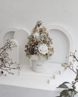 貝殼白永生聖誕樹(L)|WhiteFlower